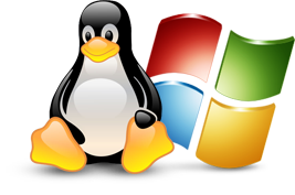 Windows vs. Linux web hosting